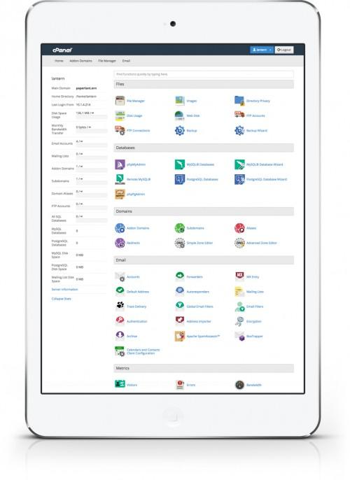 cp-iPadAir.jpg