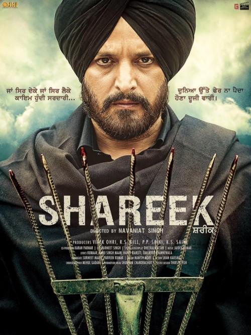 Shareek (2015) Panjabi 720p HEVC DvDRip X265 650MB