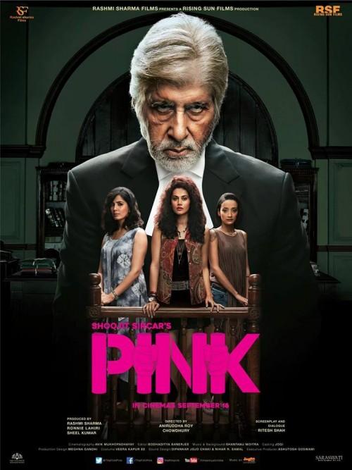 Pink (2016) Hindi 1080p HEVC BluRay x265 850MB