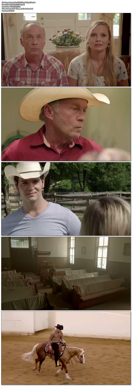 Texas Rein (2016) Full Movie