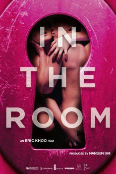 In The Room (2015) 720p BluRay x264 750MB