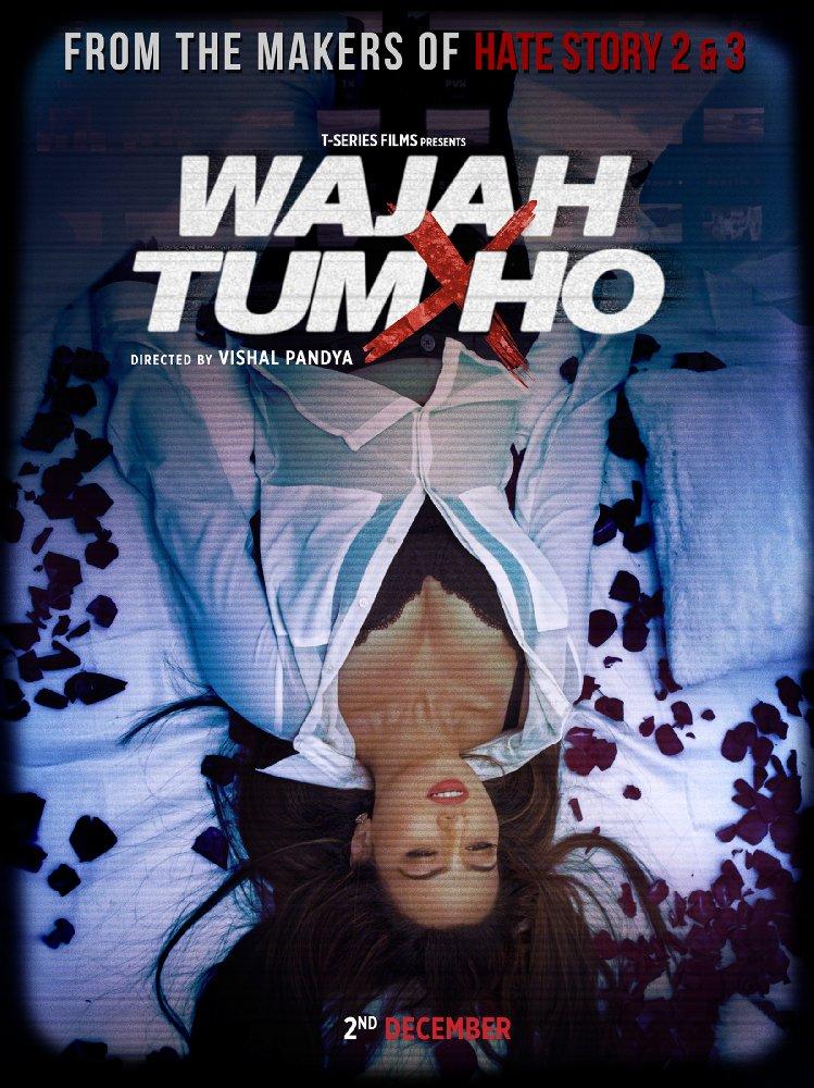 Wajah Tum Ho (2016) Hindi 720p HEVC WEB-DL x265 630 MB