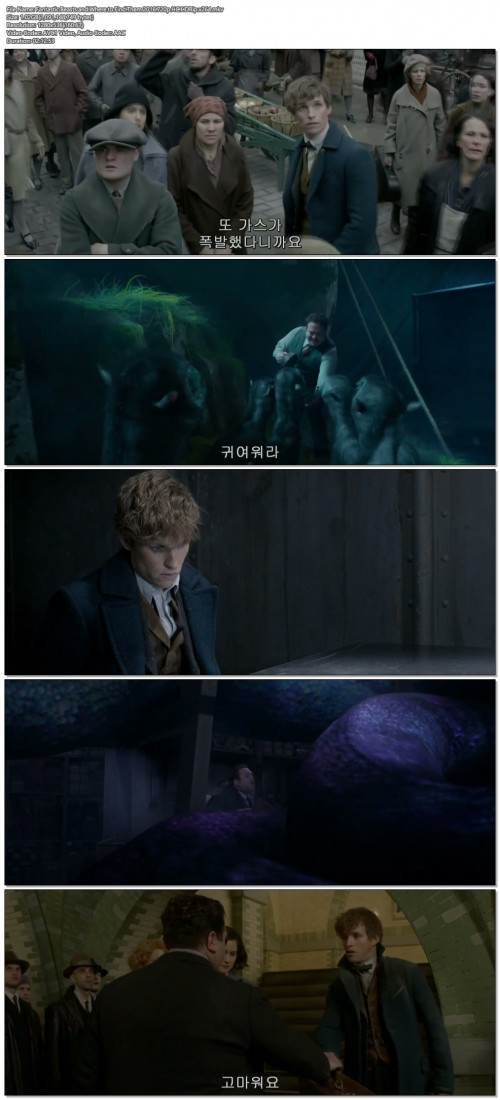 Fantastic.Beasts.and.Where.to.Find.Them.2016.720p.HC.HDRip.x264.jpg