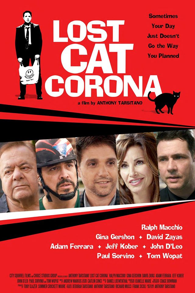 Lost Cat Corona 2017 WEB-DL x264 733 MB