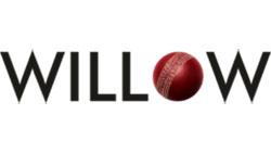 willowtv.jpg
