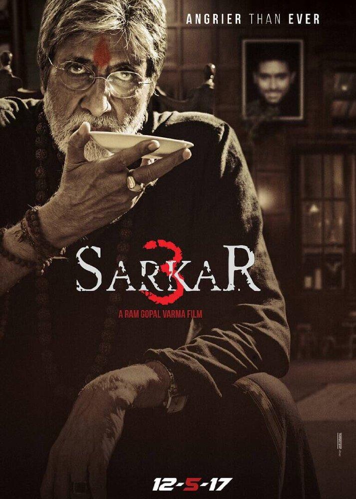 Sarkar 3 Hindi 2017 DvDScr x264
