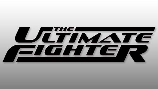 watch ultimate fighter season 26 episode 11