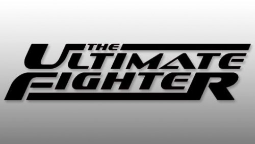 The-Ultimate-Fighter.jpg