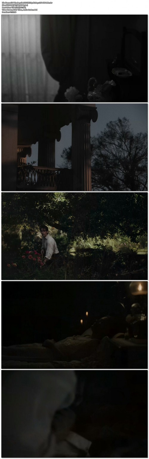 534The.Beguiled.2017.720p.BluRay.x264680MB.jpg