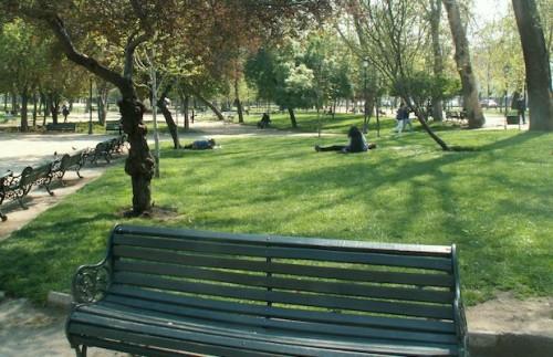 parque-forestal-sector-bellas-artes.jpg