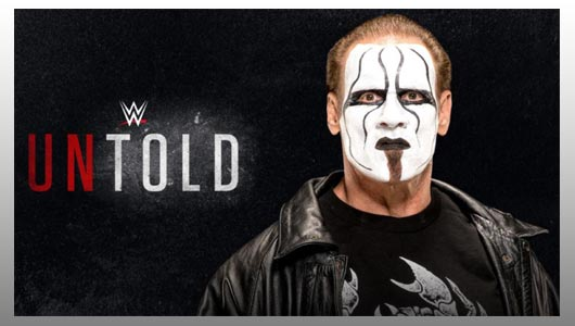 WWE Untold   Stings WWE Debut