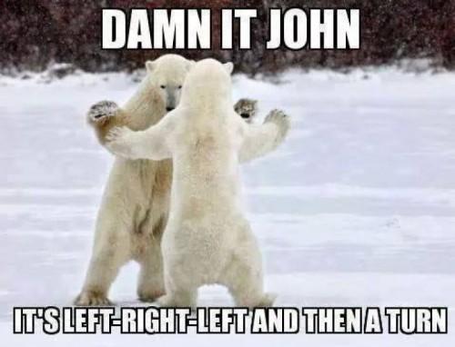 damn-it-john-polarbear-meme.jpg