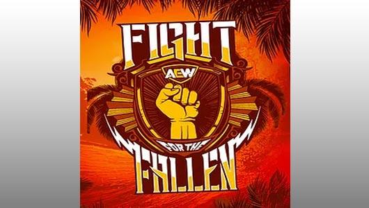 watch aew fight for the fallen 2019